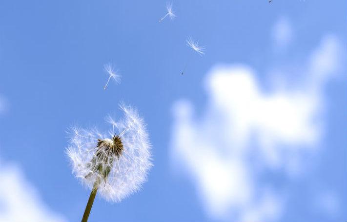 Serendipity: The Pleasant Surprises of Content Marketing