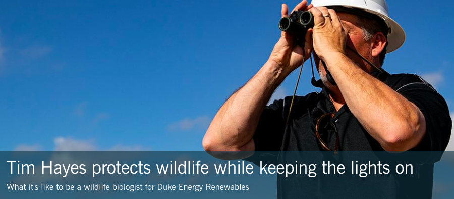 Duke Energy Tim Hayes wildlife biologist